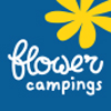 camping belvedere camping flower